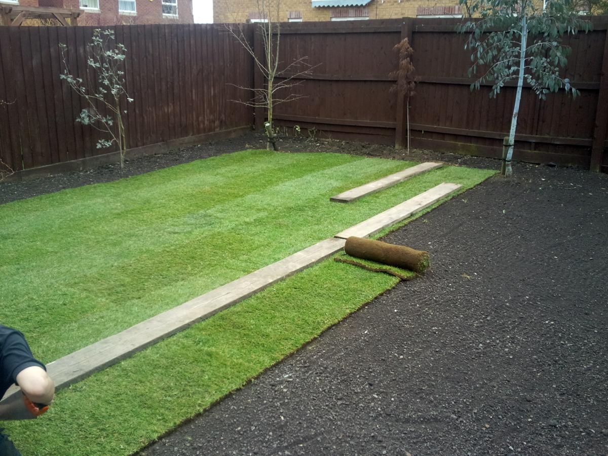 Как сделать хороший опрятный газон на даче своими руками 34