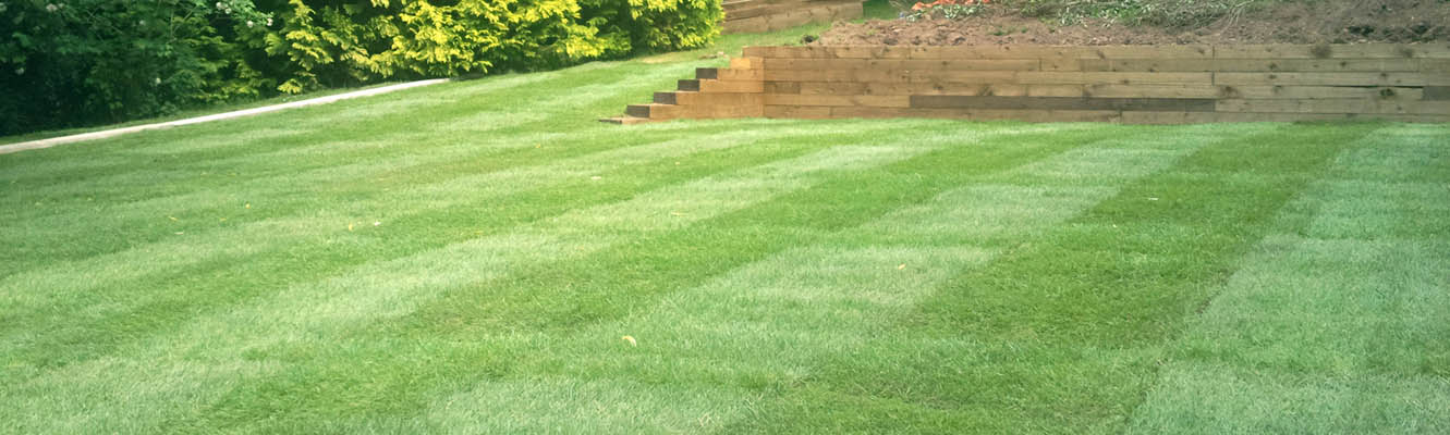 turfing - lawns